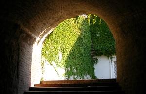 トンネルと光