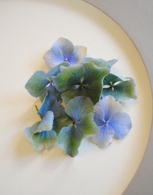 紫陽花の青緑